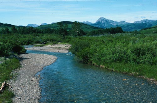 The English Creek country near Dupuyer, Montana